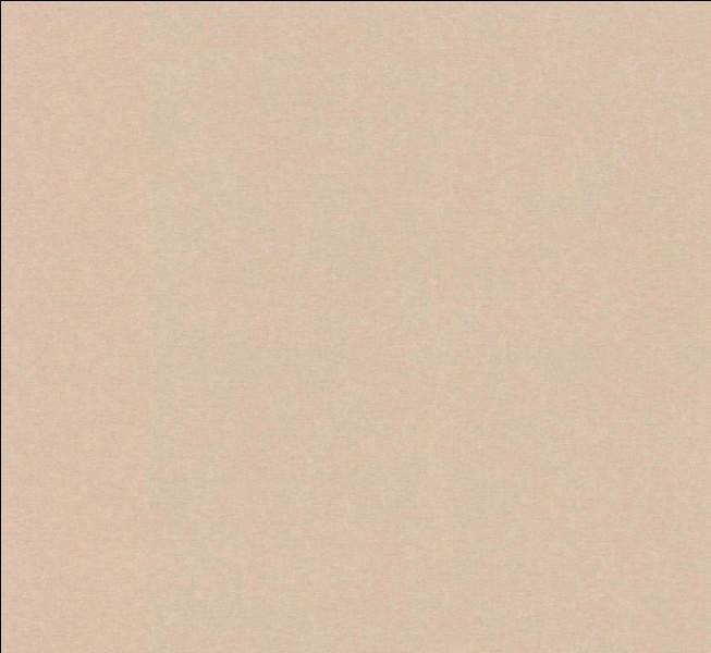 Comment dit-on la couleur beige en anglais ?