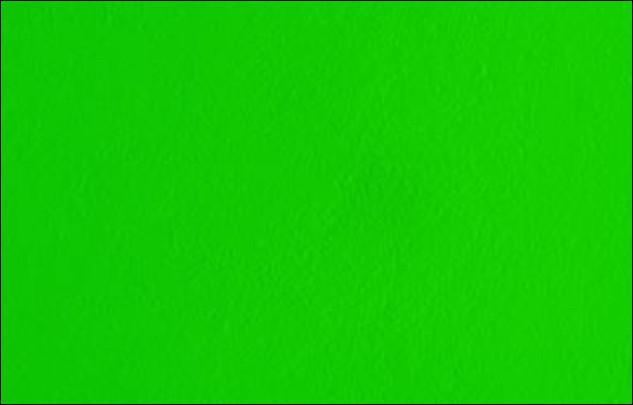 Comment dit-on la couleur verte en anglais ?