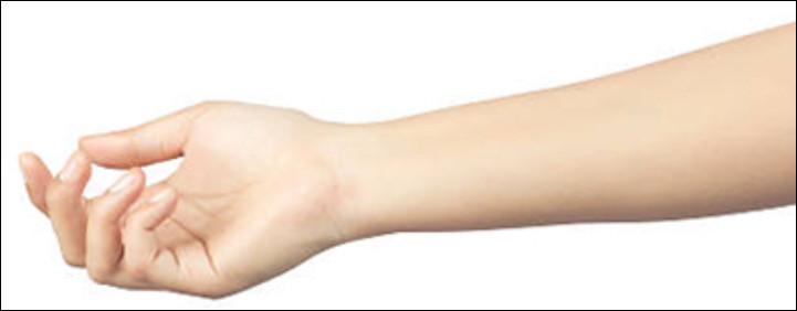 Comment dit-on un ''bras'' en anglais ?