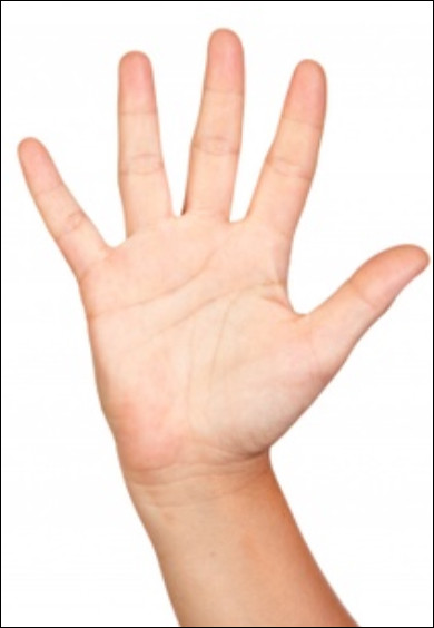 Comment dit-on une ''main'' en anglais ?