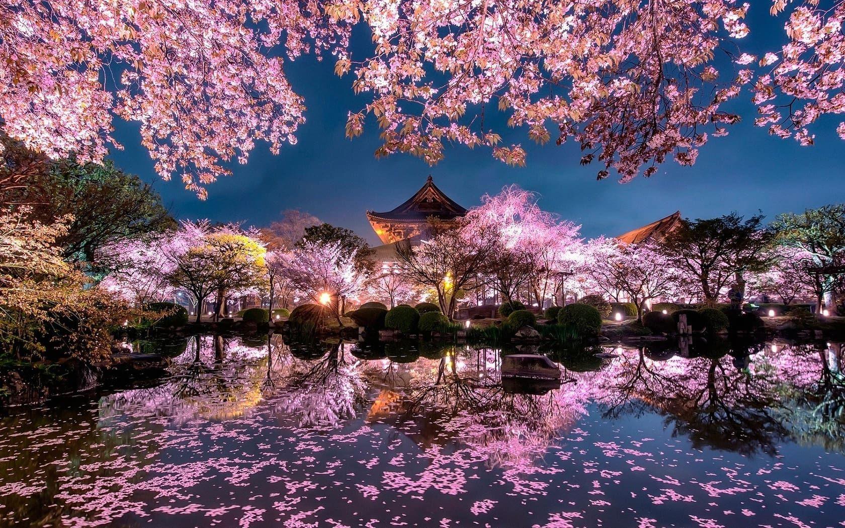 Le Japon en 10 questions !
