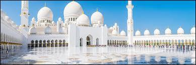Où se trouve la mosquée Cheikh Zayed ?