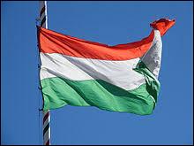 Après être reparti de Budapest, vous avez gardé plein de beaux souvenirs de ce beau pays que vous avez visité. Mais comment s'appelle-t-il au fait ?
