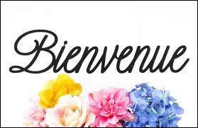 "Comment dit-on ""bienvenue"" ?"