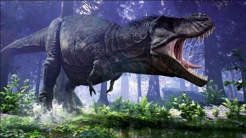 Le Tyrannosaurus Rex, sans doute l'un des plus célèbres et impressionnants, avait une morsure surpuissante qui dépassait largement celle de nos prédateurs actuels. Effectivement, elle était comprise environ entre :