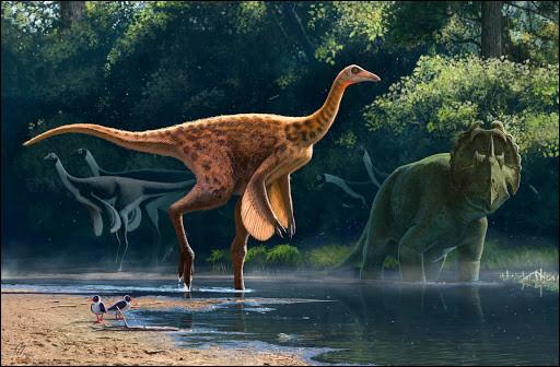 Le Struthiomimus, dinosaure struthioniforme, était incontestablement le plus rapide des dinosaures et pouvait atteindre des pointes à :