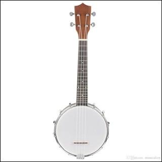 Quel est le nom de cet instrument de musique ?