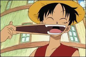 Quel est le nom du pouvoir de Monkey D. Luffy ?