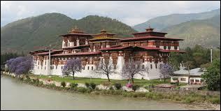 Comment s'appelle ce type de monument bhoutanais, dont un abrite les autorités temporelles et religieuses du Bhoutan ?