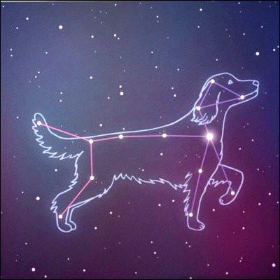 Quelle est l'étoile principale de la constellation du Grand Chien ?