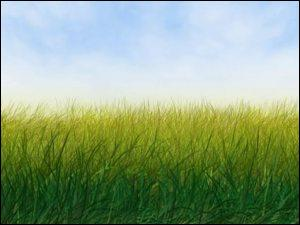 L'herbe est...
