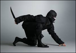 Dans un dessin animé, quels animaux sont des ninjas ?