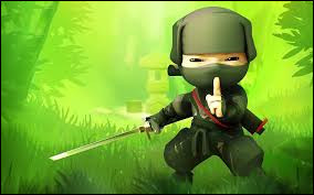 Comment les ninjas sont-ils aussi appelés ?
