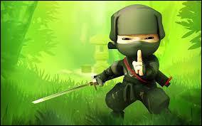 Culture générale - Ninja !