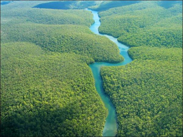 L'Amazone est le plus long fleuve du monde. Combien de ponts franchissent-ils l'Amazone ?