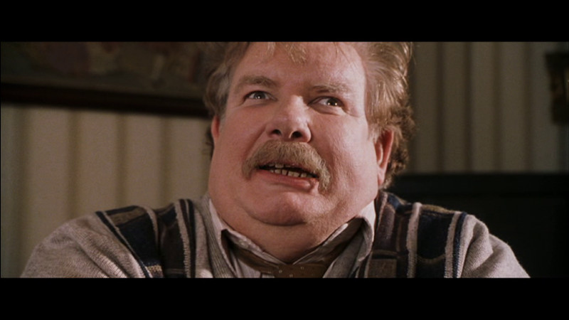 Quelle entreprise Mr. Dursley dirige-t-il ?