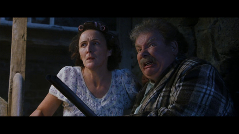 Selon Mr. et Mrs. Dursley, comment sont morts les parents de Harry ?