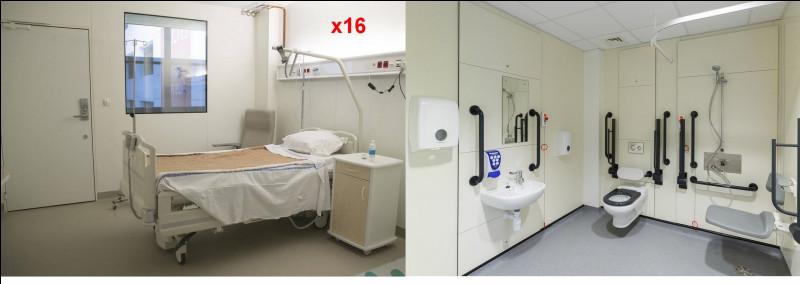 Cette chambre est très particulière. Elle a pour fonction de mettre une personne en quarantaine afin de ne pas contaminer les autres à bord, en cas de virus transmissible. Parmi les réponses ci-après, quel est l'autre nom donné au coronavirus ?