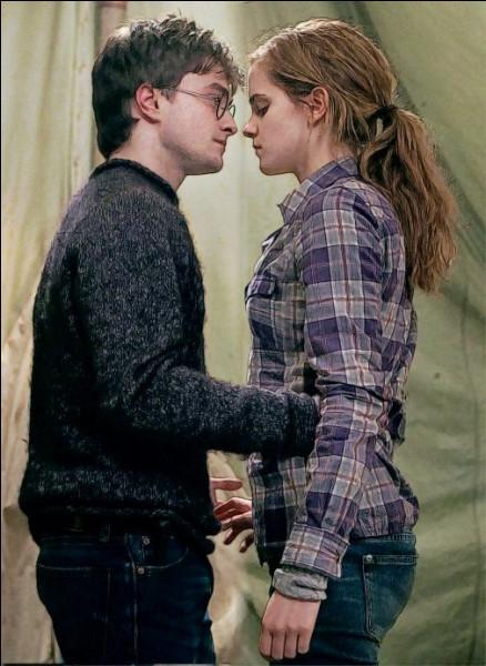 Que penses-tu du couple Harmione ?