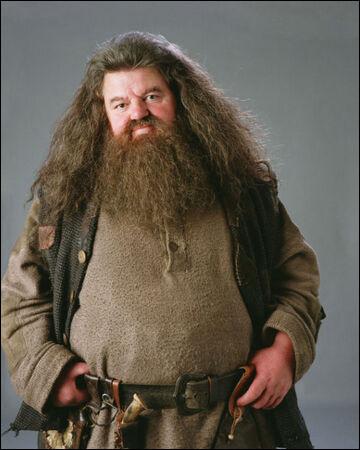 Dans quelle maison était Rubeus Hagrid ?