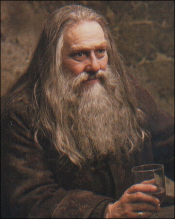 Dans quelle maison était Abelforth Dumbledore ?