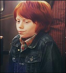 Dans quelle maison va Hugo Granger-Weasley ?