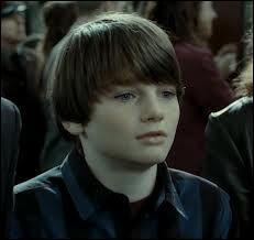 Dans quelle maison va Albus Severus Potter ?