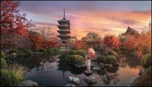 Qu'apportent les jardins japonais ? (en général)