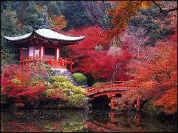 L'eau est une symbolique forte des jardins japonais.