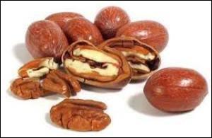 Quelles sont ces noix originaire d'Amérique centrale très consommés par le Amérindiens ?