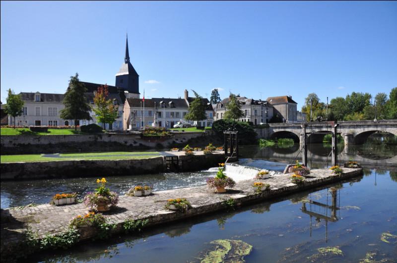 Ville de 17 000 habitants du département de Loir-et-Cher située sur la rivière Sauldre, au coeur de la Sologne :