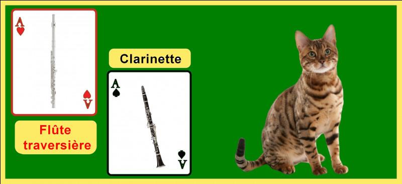 """Quel type d'instruments Prokofiev utilise-t-il dans """"Pierre et le loup"""" pour représenter le chat ?"""