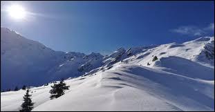 Pour être un moniteur de ski, il faut savoir faire du ski :