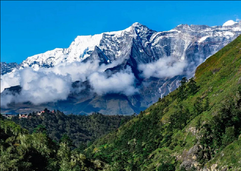Aussi hauts soient-ils, les géants himalayens sont régulièrement survolés par une espèce d'oiseau ayant la capacité unique de voler à près de 9000 mètres d'altitude. Une troupe a même une fois été observée au-dessus du mont Everest, roi des montagnes. Quel est cet oiseau si résistant aux conditions difficiles des hauteurs ?