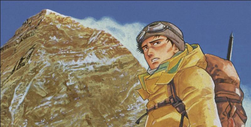 Le Sommet des dieux est un manga de Jirō Taniguchi, célèbre auteur japonais, qui relate l'aventure d'un jeune homme en quête de vérité à propos de l'affaire George Mallory. Suivant l'histoire du manga, ce dernier avait-il effectivement atteint le sommet de l'Everest en 1924 ? (Presque 30 ans avant la première conquête officielle du toit du monde par Hillary et Norgay !)