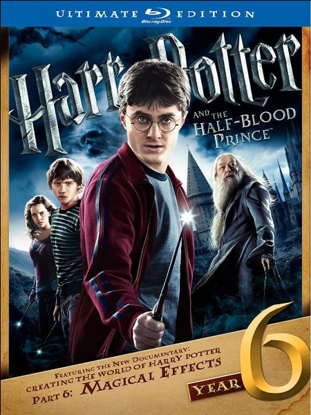 """Qui se marie dans """"Harry Potter et les reliques de la mort, part. 1"""" ?"""