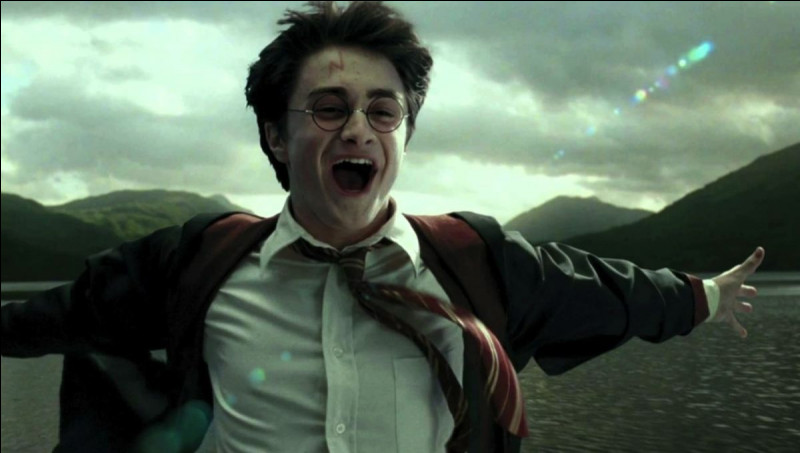 Avec qui Hermione Granger sort-elle dans le 4e film ?