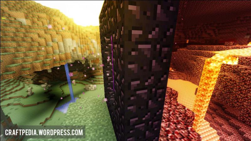Quelle créature se trouve dans les 3 dimensions de Minecraft ?