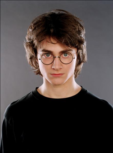 Une image = un personnage dans Harry Potter