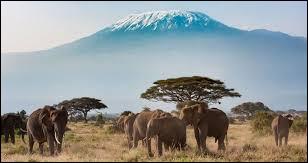 Sur quel continent se trouve la Tanzanie ?