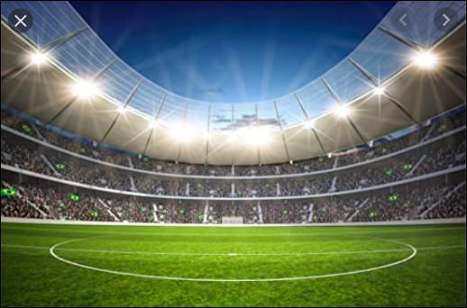 Quel est le stade qui a accueilli la finale ?