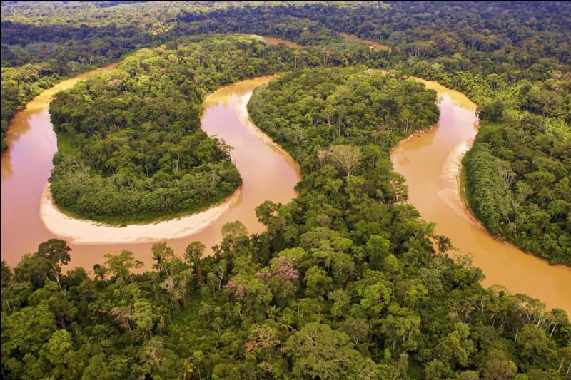 Quel est le plus long fleuve d'Amérique du Sud ?
