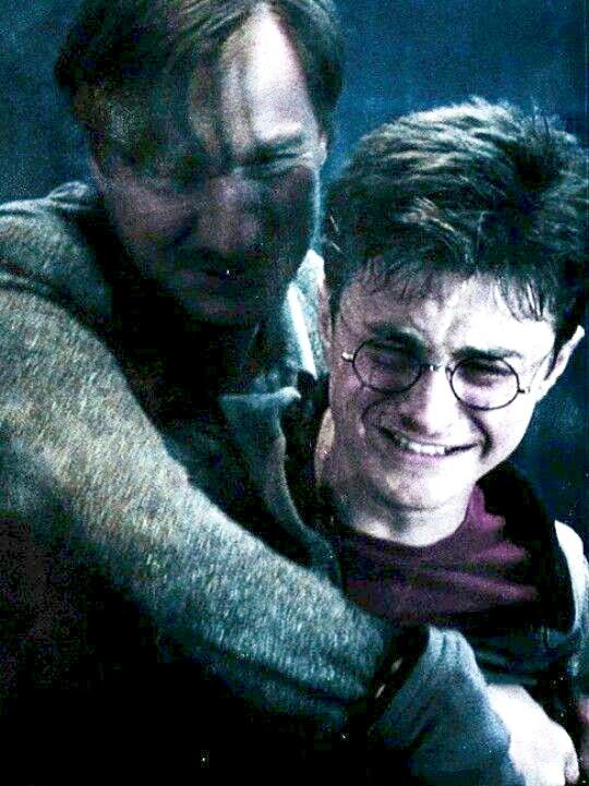 Harry Potter : [TOP 10] Les personnages avec une vie de m***** (misère)