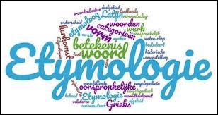 Quelle est l'étymologie du mot ?