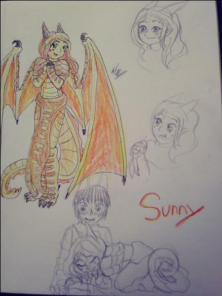 Quelle est la particularité de Sunny ?