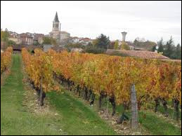 Nous terminons notre balade dans le Quercy, à Sauzet. Village viticole occitan, il se situe dans le département ...