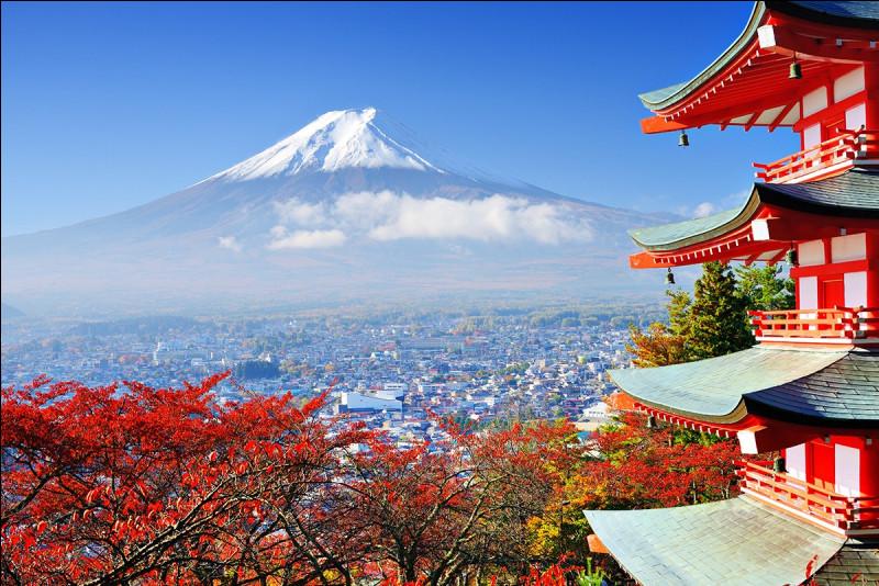 Au Japon, on mange des algues et du poisson cru.