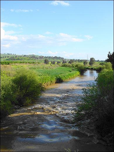 Quel fleuve le plateau du Golan domine-t-il ?