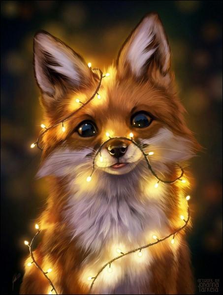 Combien de temps vit un renard roux ?