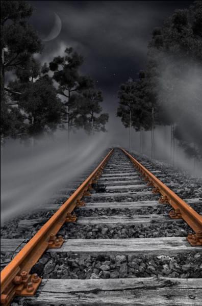 """Qui chantait """"Et sortant de son portefeuille un vieil horaire de train il dit Je t'avais prévenue je suis étranger"""" ?"""